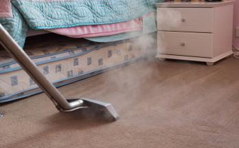 Best Carpet Steam Cleaner 2020