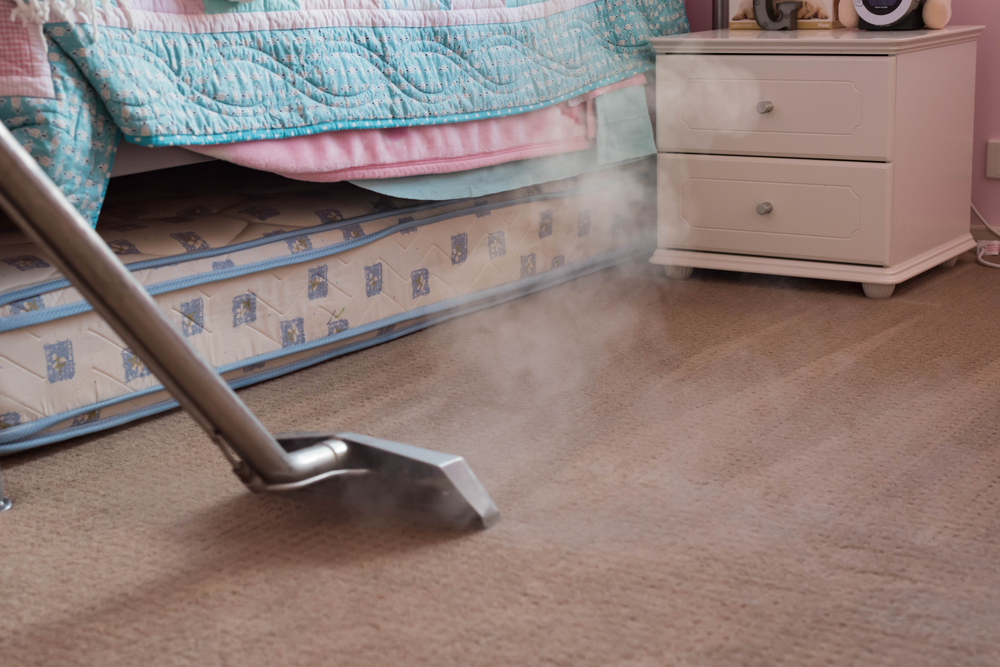 Best Carpet Steam Cleaner 2019