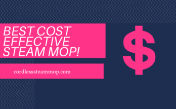 Best cost effective steam mop