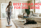 Best steam mop for dog urine